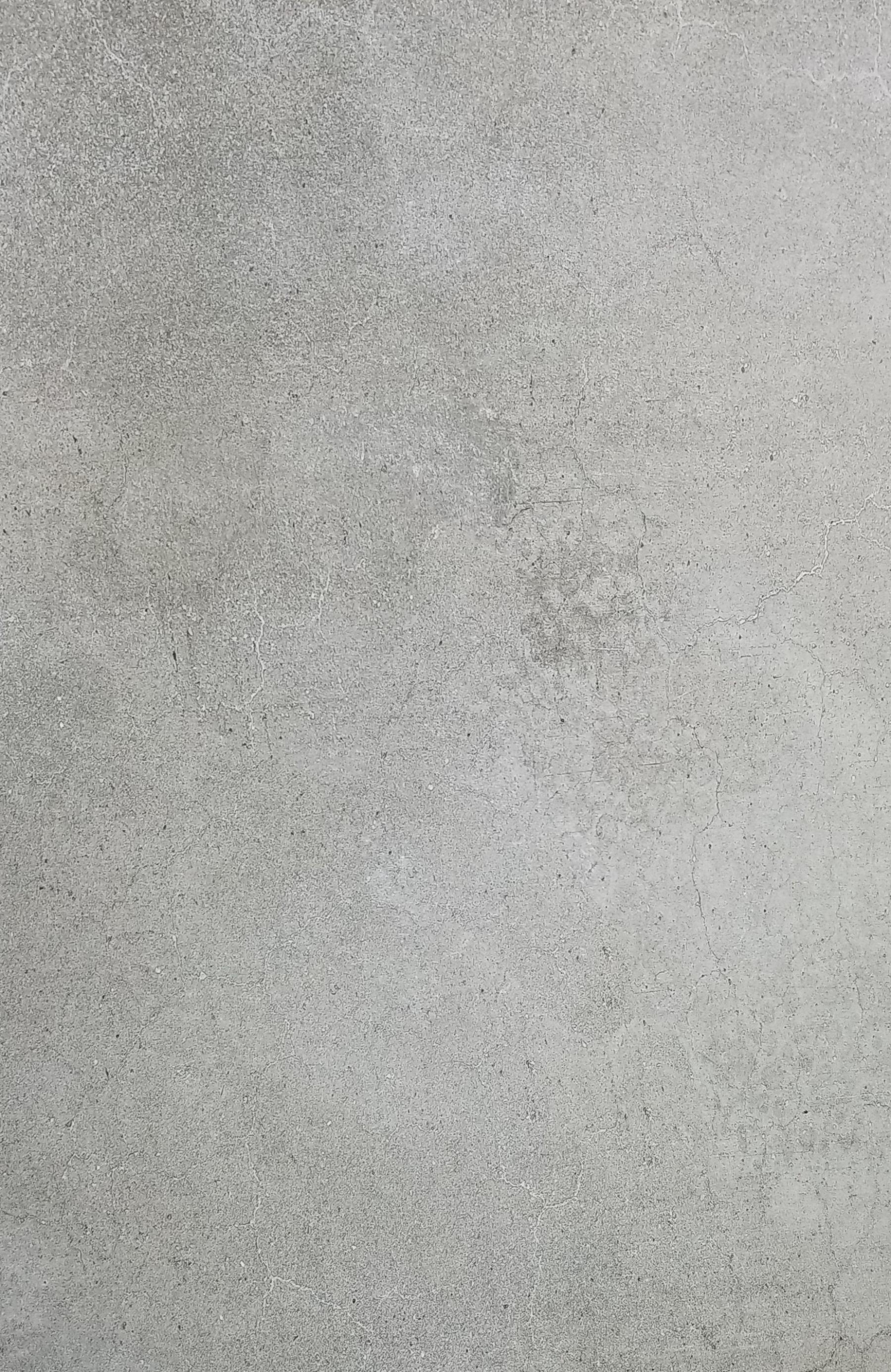 Gaudi Gris 24x48
