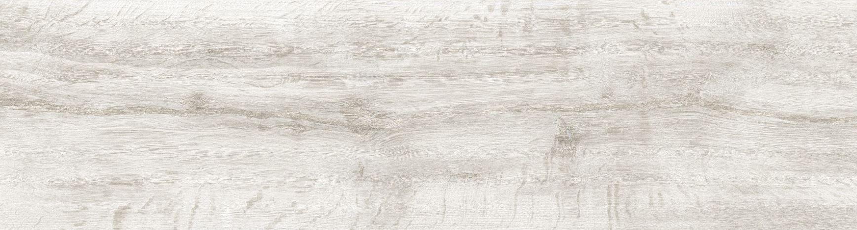 Wild Blanco 6x24